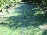 mreze pod grmi lesnikov